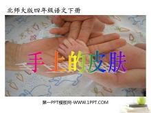 《手上的皮�w》PPT�n件4