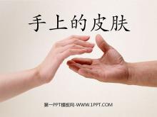《手上的皮�w》PPT�n件5