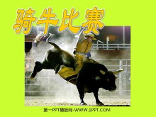 《骑牛比赛》PPT课件5