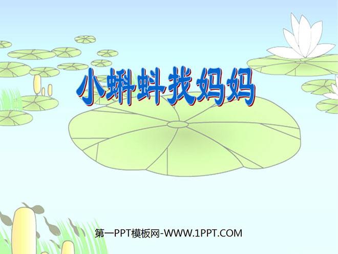 《小蝌蚪找妈妈》PPT课件5