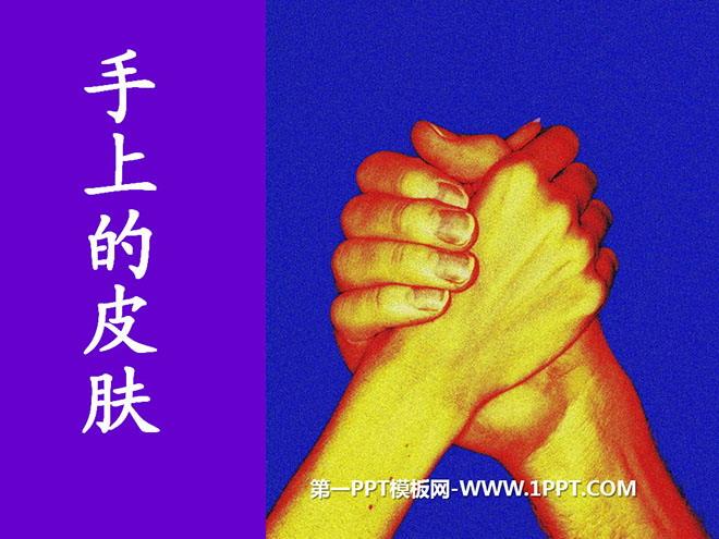 《手上的皮肤》PPT课件3