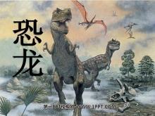 《恐龙》PPT课件4