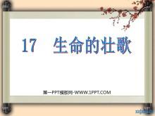 《生命的壮歌》PPT课件2
