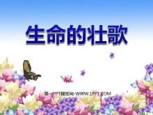 《生命的壮歌》PPT课件4