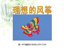 《理想的风筝》PPT课件5