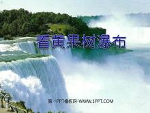 《看黄果树瀑布》PPT课件3