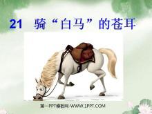 """《骑""""白马""""的苍耳》PPT课件2"""
