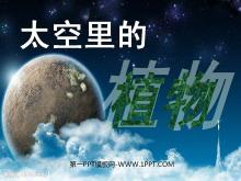 《太空里的植物》PPT课件2