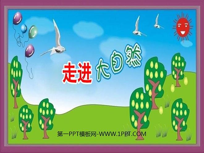 《走进大自然》ppt课件4