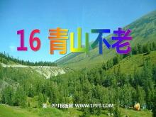 《青山不老》PPT课件下载4