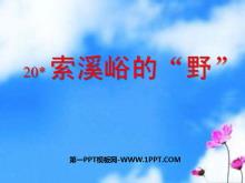 """《索溪峪的""""野""""》PPT课件下载6"""