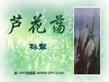 《芦花荡》PPT课件4