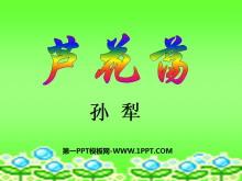 《芦花荡》PPT课件5