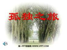 《孤独之旅》PPT课件5