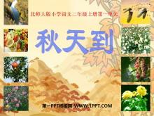 《秋天到》PPT课件3