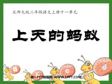 《上天的蚂蚁》PPT课件4