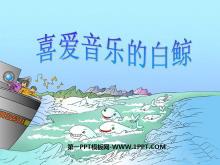 《喜爱音乐的白鲸》PPT课件3