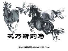 《巩乃斯的马》PPT课件5