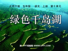 《绿色千岛湖》PPT课件3