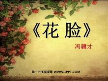 《花脸》PPT课件3