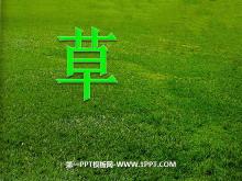 《草》PPT课件5