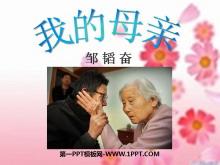 《我的母亲》PPT课件7