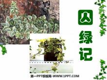 《囚绿记》PPT课件2