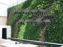《环球城市 风行绿墙》PPT课件4