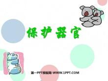 《保护器官》PPT课件2