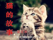 《猫的故事》PPT课件