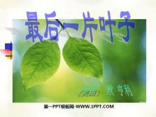 《最后一片叶子》PPT课件2