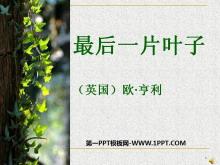 《最后一片叶子》PPT课件3