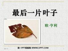《最后一片叶子》PPT课件4