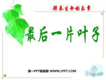 《最后一片叶子》PPT课件5