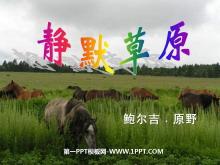 《静默草原》PPT课件2