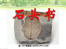 《石�^��》PPT�n件4