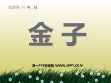 《金子》PPT课件3