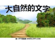 《大自然的文字》PPT课件3