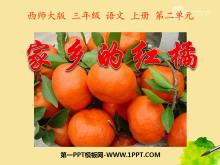 《家乡的红橘》PPT课件5