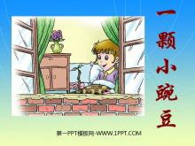 《一�w小豌豆》PPT�n件3