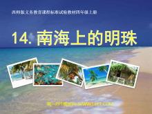《南海上的明珠》PPT课件4