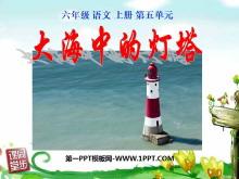 《大海中的�羲�》PPT�n件4
