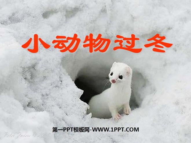 """为什么要这样过冬呢?  燕子说:""""冬天快要来了,虫子也快没啦."""