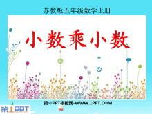 《小数乘小数》小数乘法和除法PPT课件