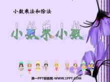 《小数乘小数》小数乘法和除法PPT课件4