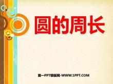 《圆的周长》圆PPT课件4