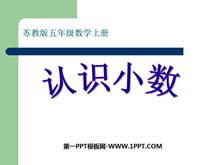 《认识小数》小数的意义和性质PPT课件