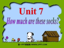 《How much are these socks?》PPT课件