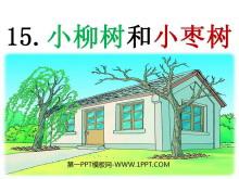 《小柳树和小枣树》PPT课件3