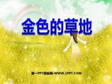《金色的草地》PPT课件3